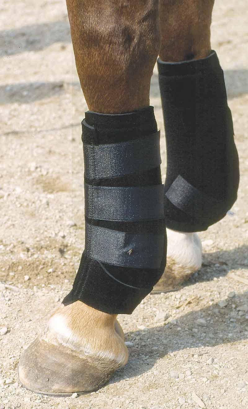 Neoprénové kamaše pro koně zadní černé velikost L