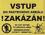 Výstražná tabulka Vstup do pastevního areálu zakázán!