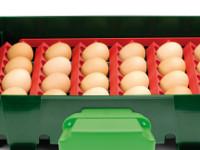 Sada držáků vajec pro líhně Covina/ET12, Real 12