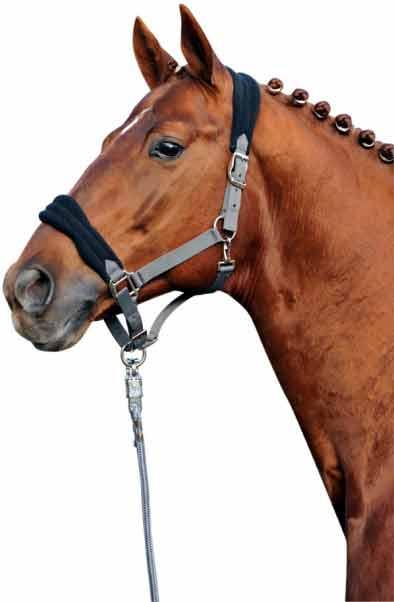 Ohlávky a vodítka pro koně