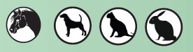 Olli SG 3 Psi, kočky, koně, králíci