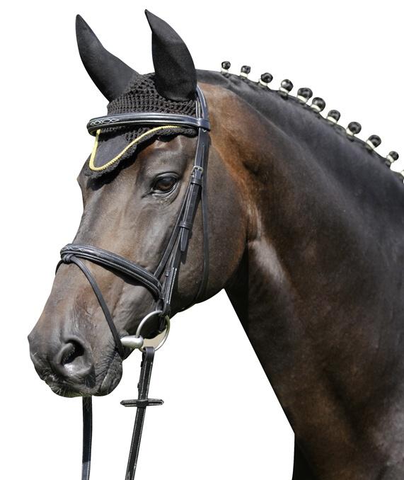 Čabraka HKM na uši koní se stříbrným lemem černá velikost 1